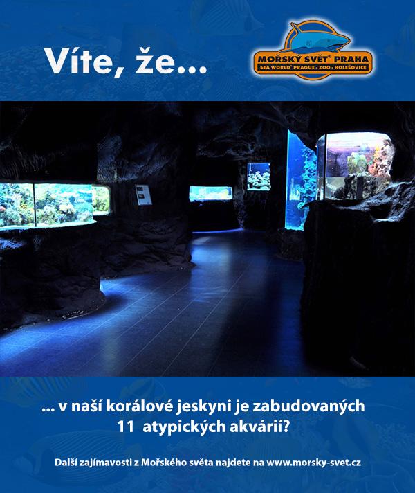 11 atypických akvárií